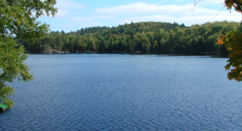 Luozon Lake Property For Sale