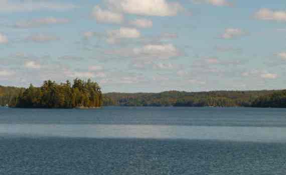 Kawartha Lakes Properties