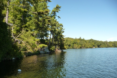 Opinicon Lake